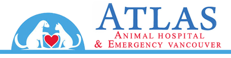 Atlas Animal Hospital & Emergency Vancouver